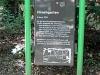 Hirschgarten6