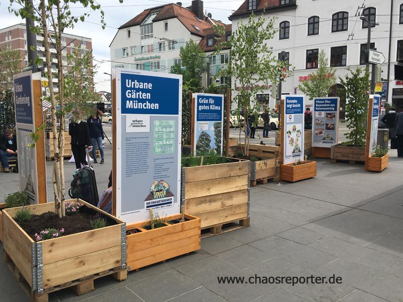 Urbane Gärten am Bahnhofsplatz Pasing