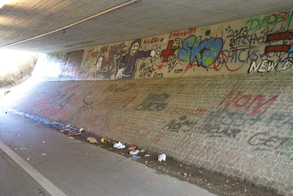 Plastikabfall der Jugend in Pasing unter dem Bahntunnel am Sportplatz (c) Chaosreporter.de