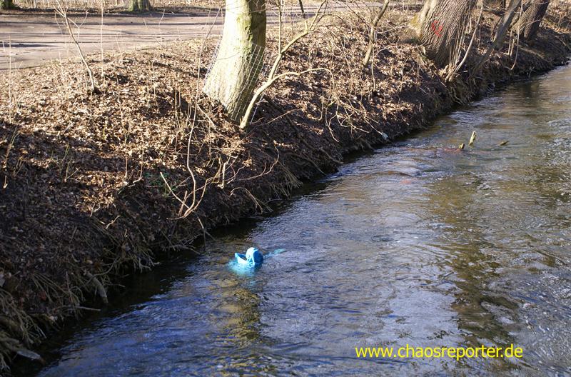 Blauer Müllsack in der Würm die dann irgendwann im Meer endet.