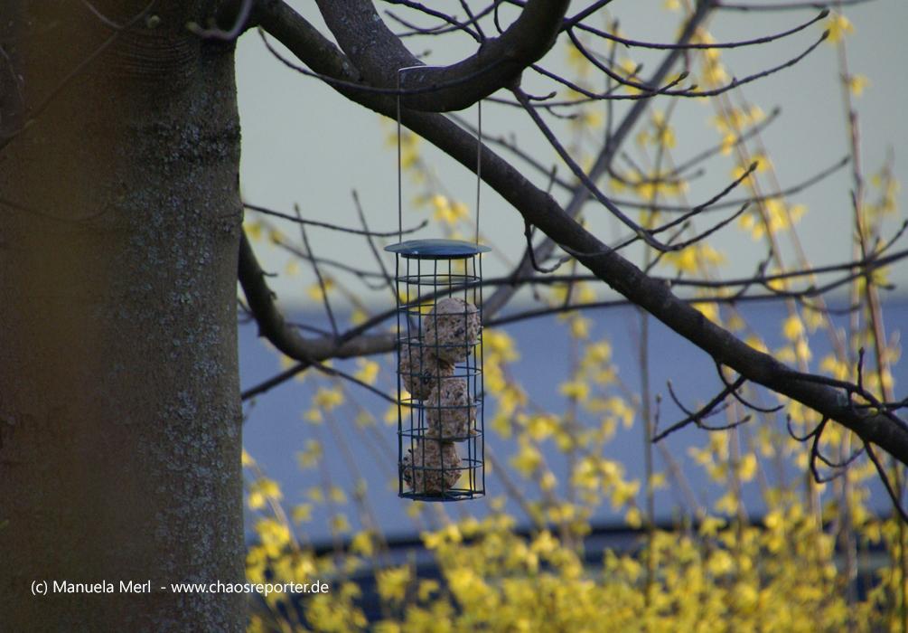 Futtersilo mit Vogelfutter